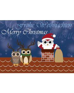 Postkarte Nikolaus-Eule im Kamin
