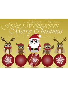 Postkarte Nikolaus-Eule mit Team