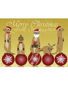 Postkarte Weihnachten - Erdmännchen auf Christbaumkugeln
