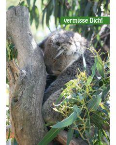 """Postkarte """"vermisse Dich!"""" - Koalabär"""