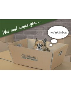 """Postkarte Hund im Umzugskarteon  """"Wir sind umgezogen"""""""