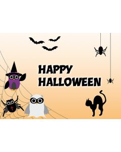 "Postkarte Spider-Eulen ""Happy Halloween"""