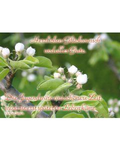 """Postkarte Apfelblüte """"Die Jugend ..."""""""