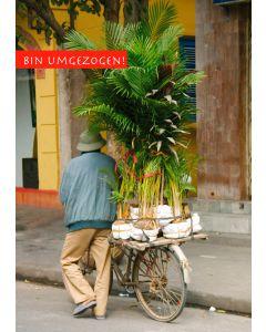 Postkarte Umzug Mann mit Pflanzen auf Fahrrad