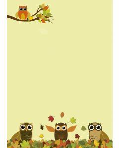 Briefpapier Eulen im bunten Herbstlaub