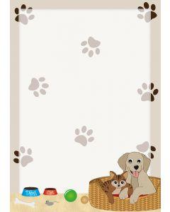 beste Freunde Hund und Katze