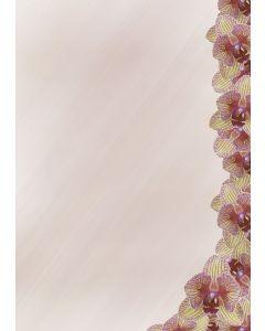 Briefpapier rosa Orchideen