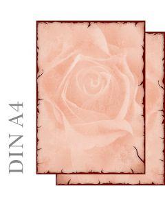 Motivpapier Rose antik beidseitig bedruckt