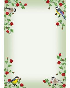 Briefpapier rote Rosen und bunte Vögel