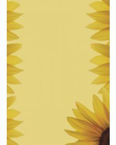 Briefpapier Sonnenblumen