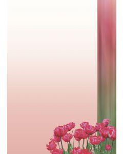 Briefpapier rote Tulpen